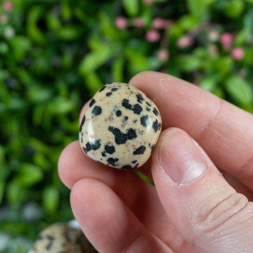 Dalmatian Jasper Charity Stone