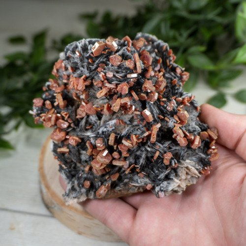 Large Vanadinite over Black Barite