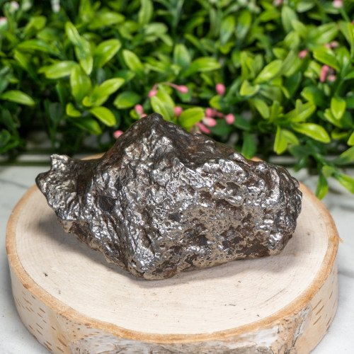 Campo Del Cielo Meteorite #5
