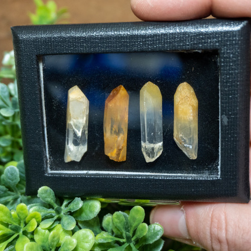 Mango Quartz Box #4