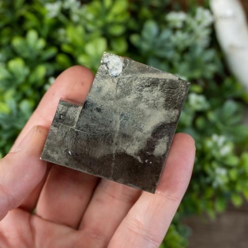 Tabular Pyrite #2