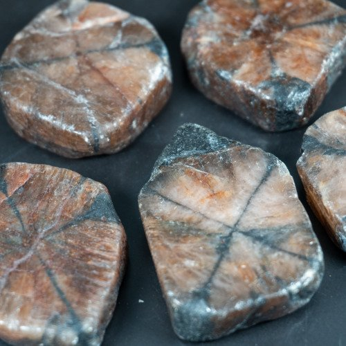 Chiastolite Half Polished Slice