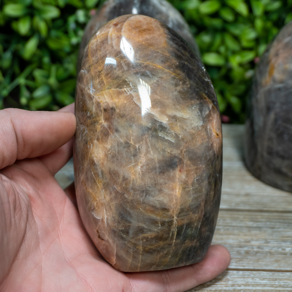 Black Moonstone Free Form