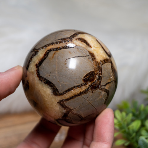 Large Septarian Sphere