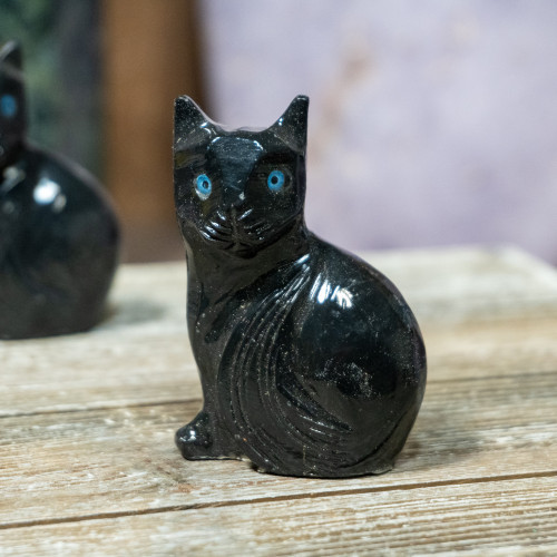 Onyx Cat