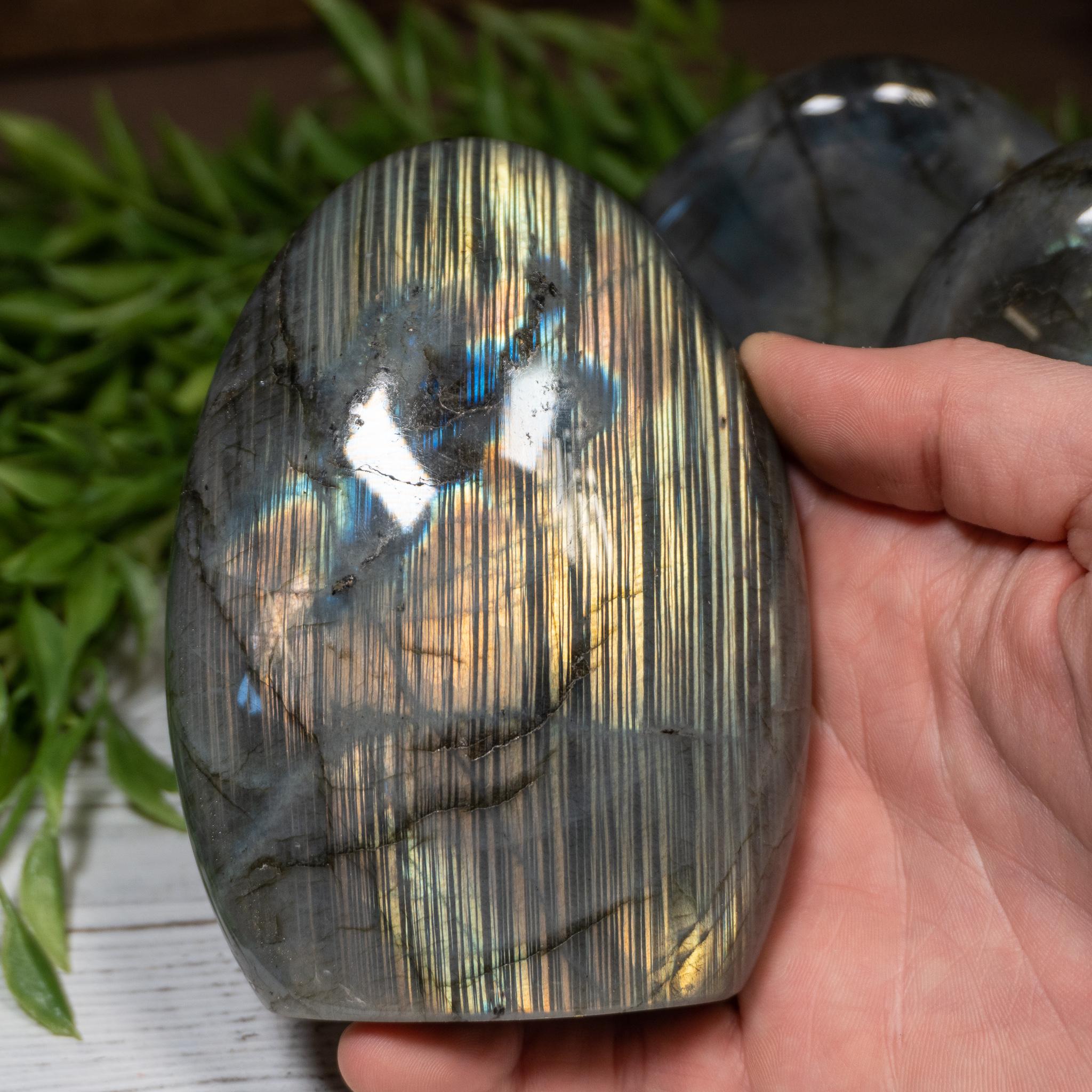 Small Labradorite Free Form