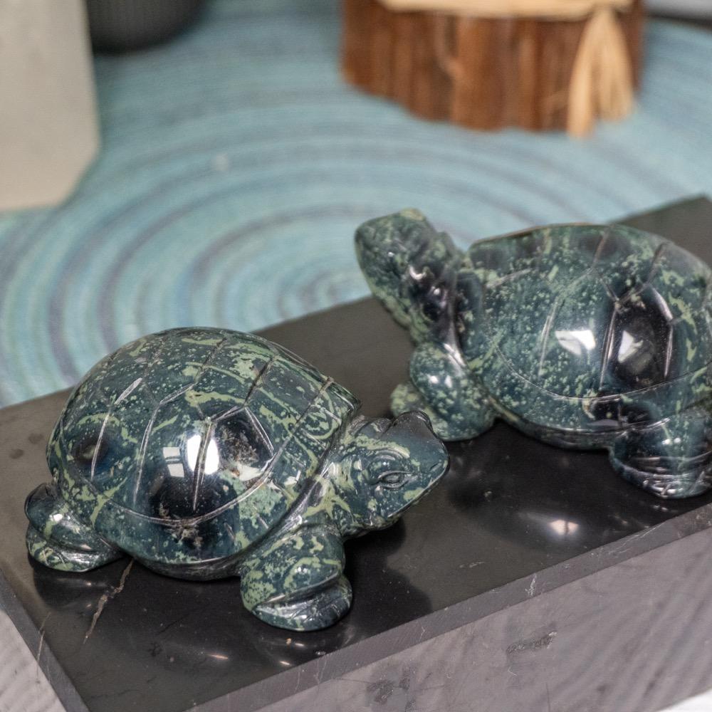 Kambaba Jasper Turtle