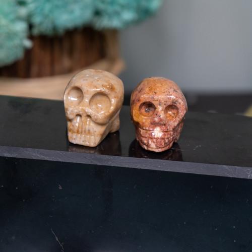 Dolomite Skull