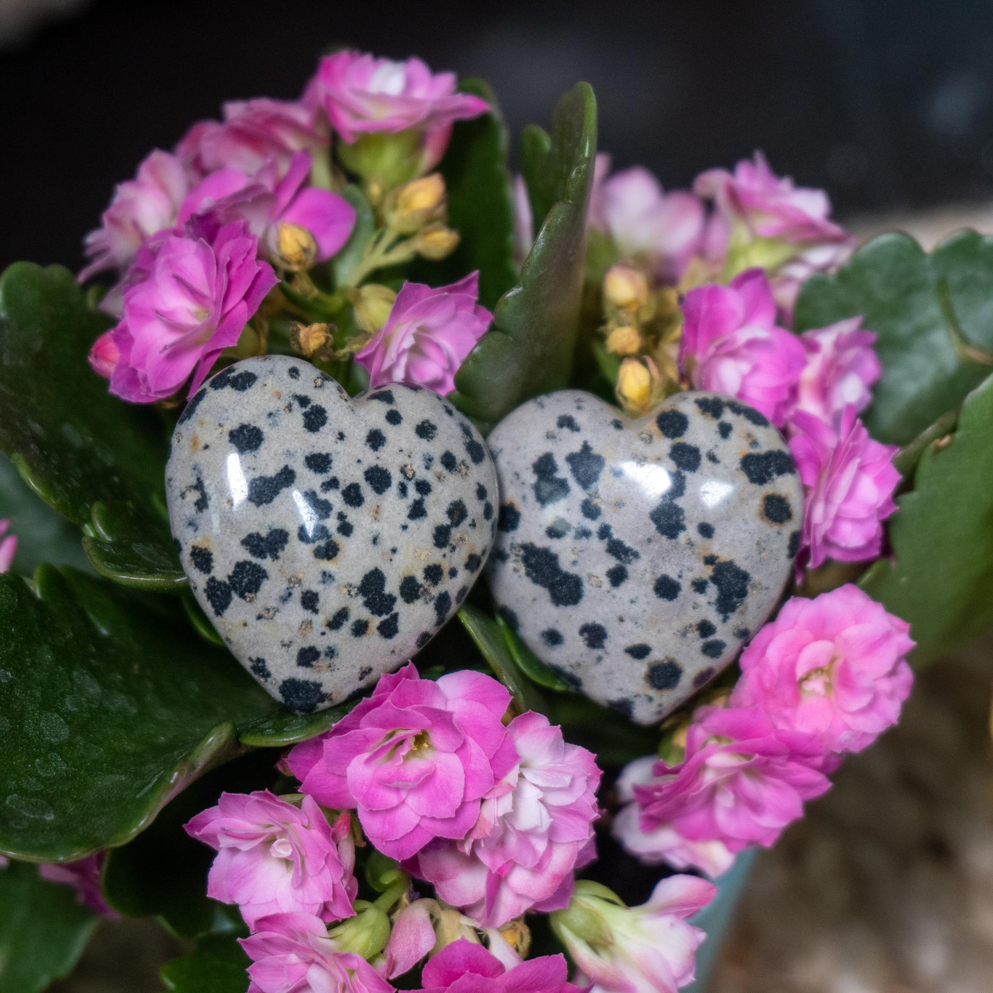 Dalmation Stone Heart
