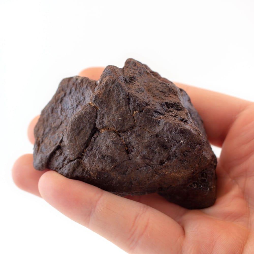 "4420 ""Mother Ship"" Meteorite"