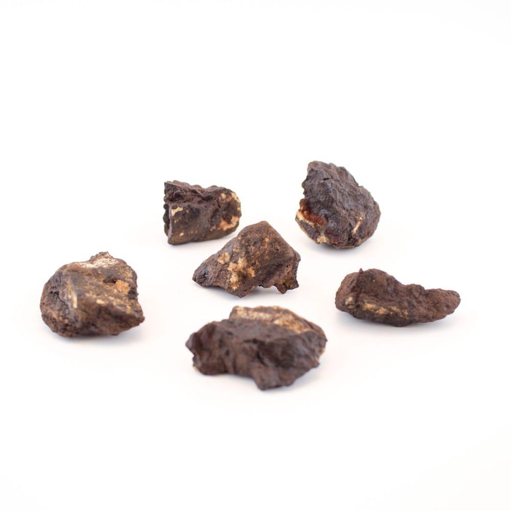 "4420 ""Cosmic Altitude"" Meteorite Fragments"