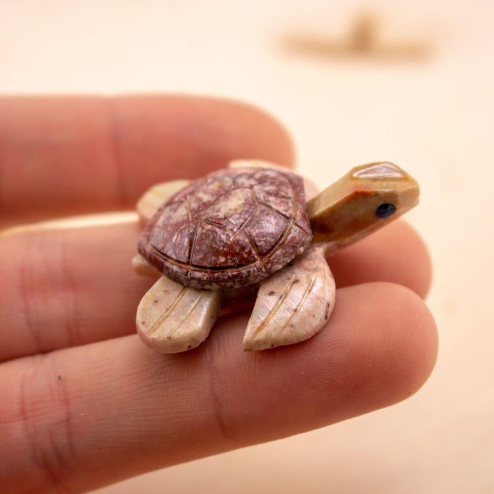 Dolomite Turtle