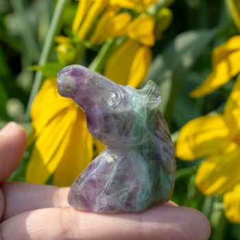Small Fluorite Horse Head