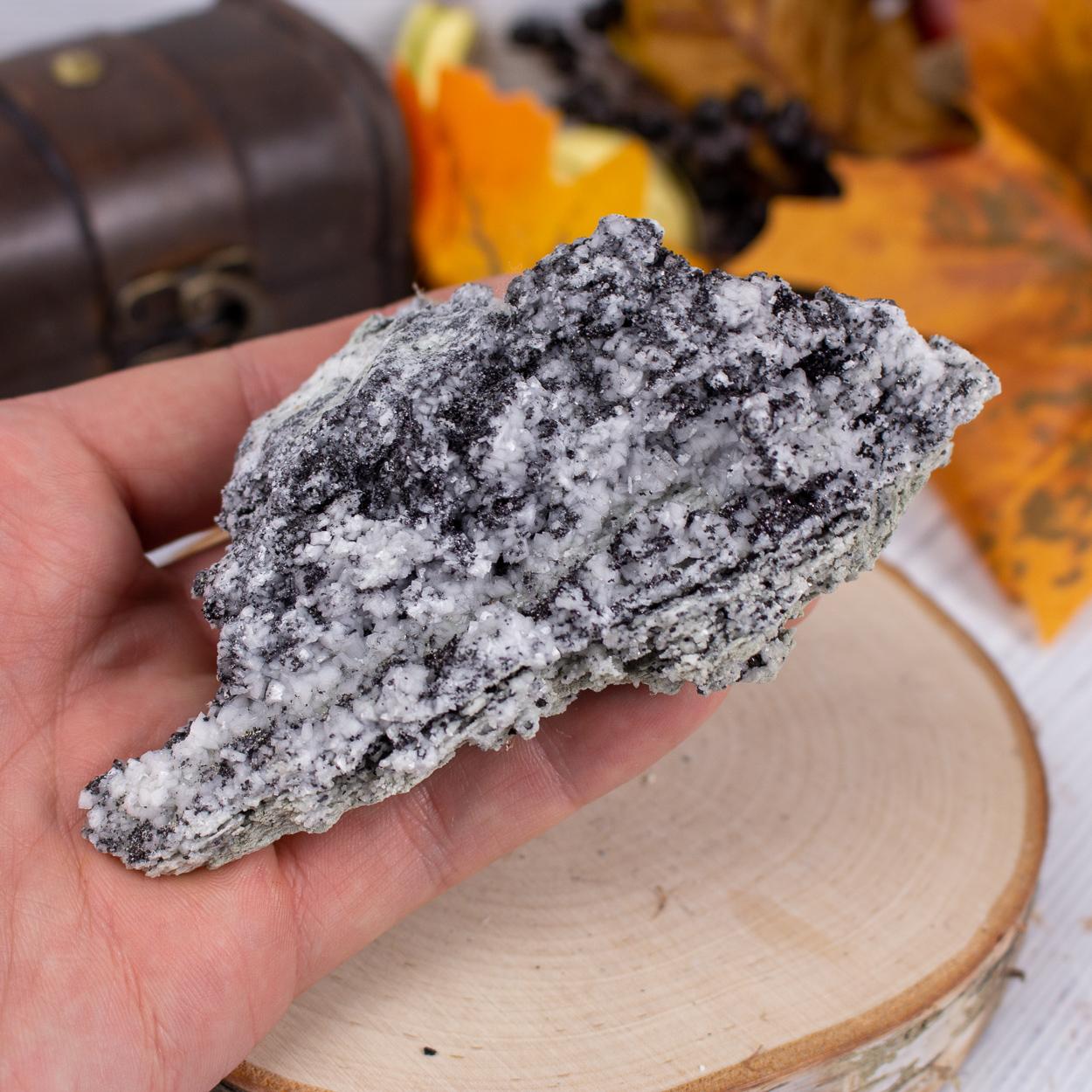 Magnetite in Dolomite #1
