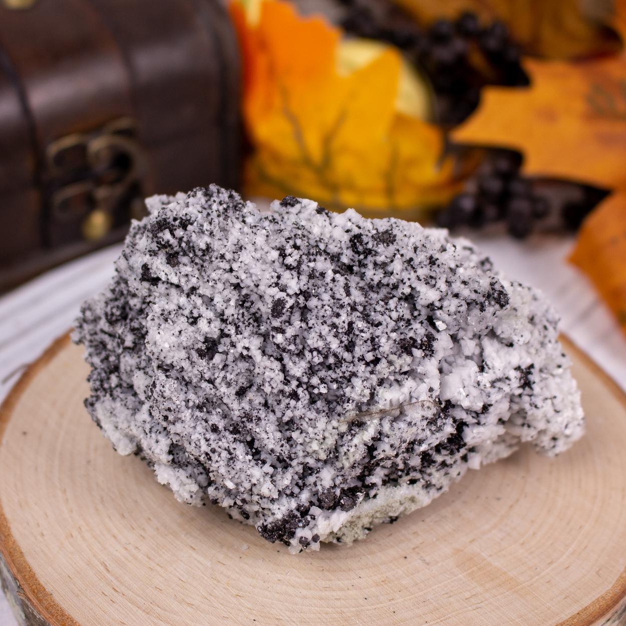 Magnetite in Dolomite #3