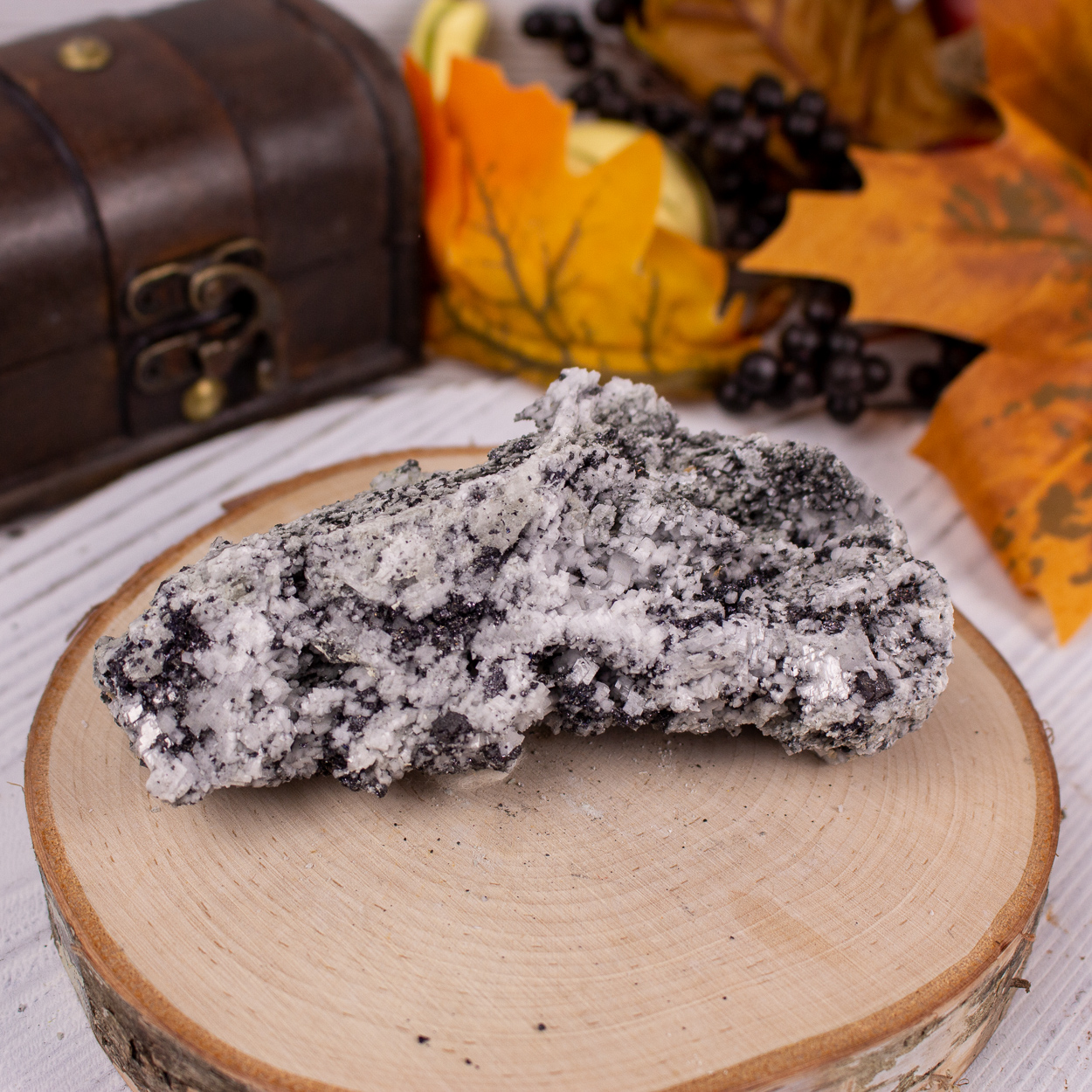 Magnetite in Dolomite #5