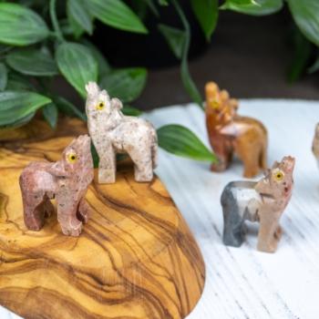 Dolomite Dog - Animal Sanctuary Charity