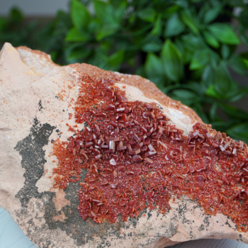 Vanadinite on Matrix